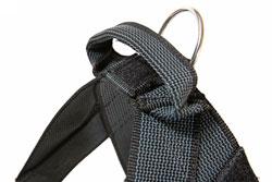 cg belt handle1