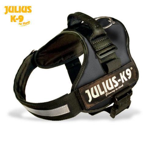 Schwarzklein on Julius K9 Power Harness