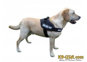 Julius K9-IDC powerharnesses -black-