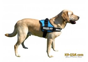 Julius K9 powerharnesses -aquamarine-